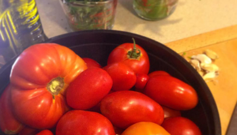derTung_tomatoes
